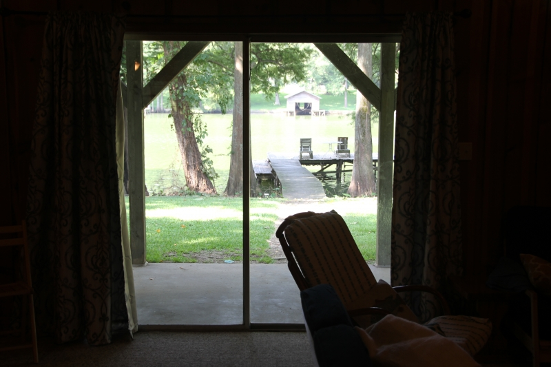 Looking out the back door